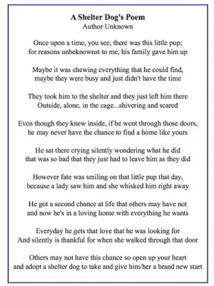 dog's poem: Animal Rescue, Dogs Deserve, Shelter Dogs, Dogs Poems ...
