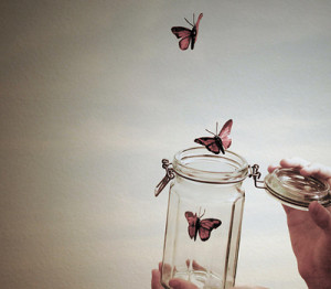 Butterflies And Transformation