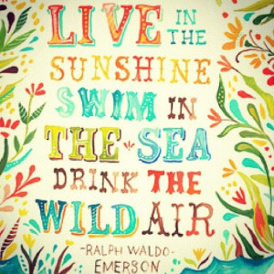 live in the sunshine swim in the sea drink the wild air#quotes#surf
