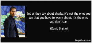... you have to worry about, it's the ones you don't see. - David Blaine