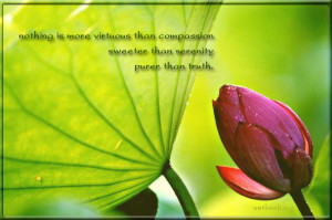 Serenity quotes… Nothing is more virtuous than compassion