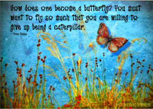 Inspirational and Motivational Quotes about Butterflies