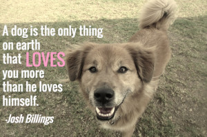 ... dog – here are 25 famous dog quotes about what makes dogs wonderful