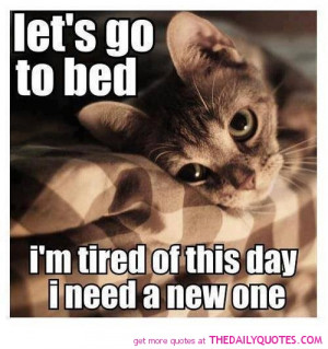 Cute Cats Pics Sayings