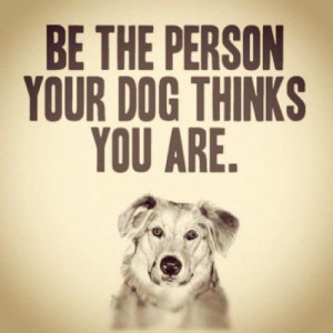 10 inspirational quotes about dogs