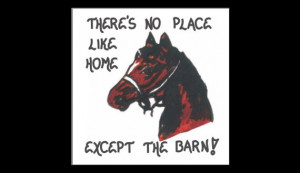Horse Magnet - Quote, equine lovers, mare, barn, stable, equestrians ...