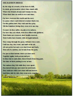 Rainbow Bridge- My neighbor gave me a copy of this poem after we had ...
