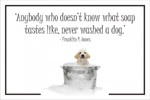 File Name : Dog%20quote%2009.jpg Resolution : 800 x 533 pixel Image ...