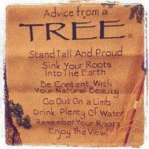 Don't be afraid to go out on a limb. It's where all the fruit is ...