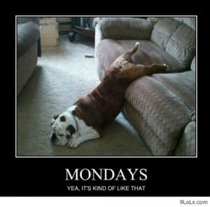Today is Monday - Funny Pictures, Funny Quotes, Funny Videos - 9LoLs ...