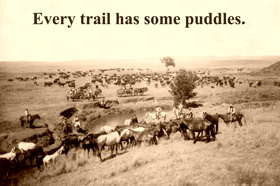 Every trail has some puddles .
