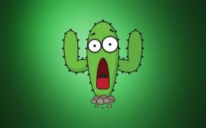 funny hd wallpapers tags funny cactus description funny cactus