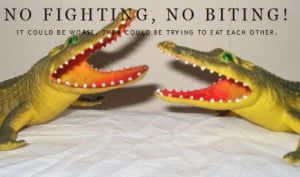 Katherine from over at No Fighting, No Biting shares some thoughts on ...