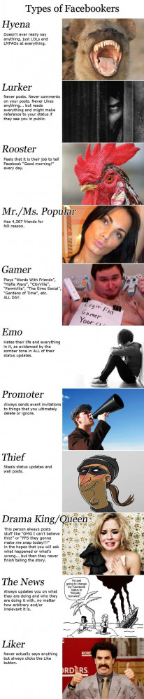 Type of Facebookers: Which one are you? (I'm a Lurker and a Liker