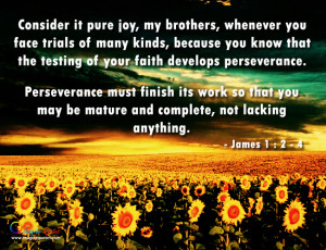 The testing of faith develops perseverance Bible Quotes
