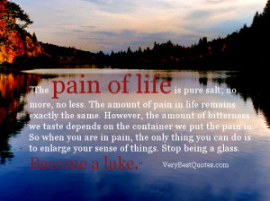 The pain of life is pure salt – Inspirational Story