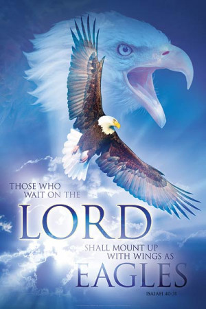 On Eagle Wings Bible Study
