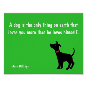 Dogs Unconditional Love Quotes Dog unconditional love quote
