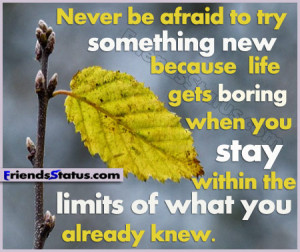 Never be afraid to try something new because life gets boring when you ...