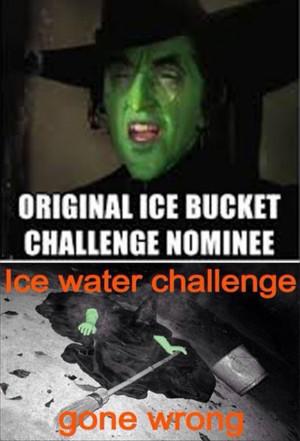 Ice Bucket Challenge Funnies – 18 Pics
