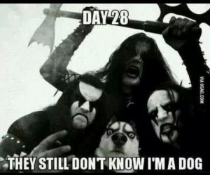 Day 28: They still don't know I'm a dog.