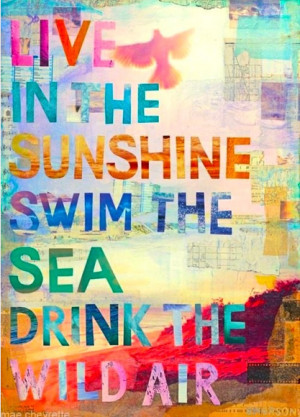First Day Of Summer Quotes Official day of summer!