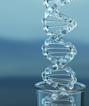 genetic testing downs syndrome