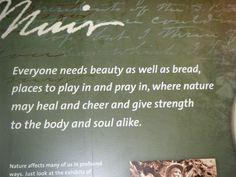 John Muir More