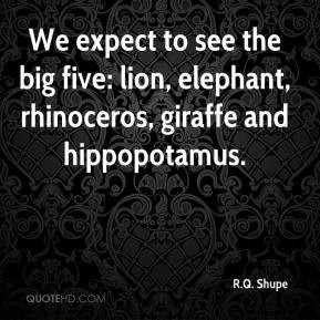 We expect to see the big five: lion, elephant, rhinoceros, giraffe and ...