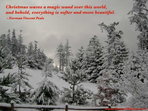 Christmas waves a magic wand over this world ,
