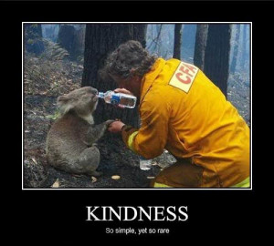 Always be kind to animals!