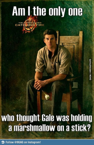 The Hunger Games THG