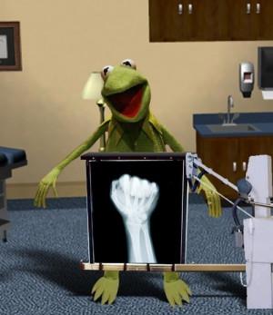 Kermit X ray