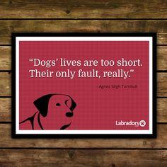 Dog Quote Card - Framed $18.99 by Labradors.com | Labradors.com Shop ...