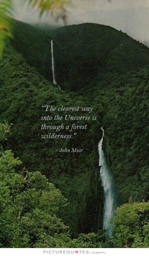 Inspiring Quotes Nature Quotes Universe Quotes Go Green Quotes Forest ...