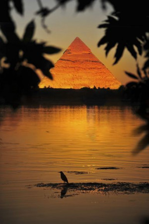 disneyfoodtravel : Nile River & The Egyptian Pyramids