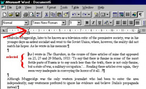 How to put in a quote in an essay?