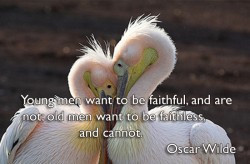 Young-men-want-to-be-faithful-and-are-not-old-men-want-to-be-faithless ...