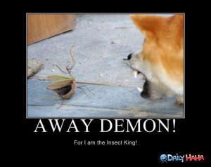 Away_Demon_funny_picture