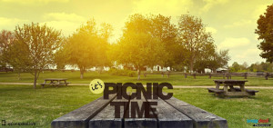 It's Picnic Time