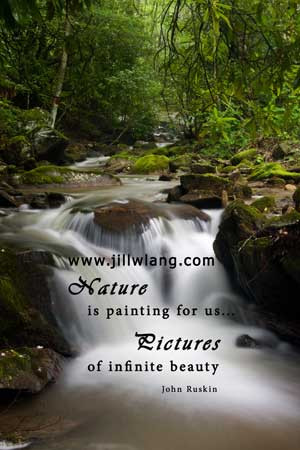 nature quotes about nature and life quotes of nature beauty quotes ...