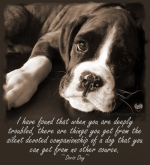 Best Dog Quotes