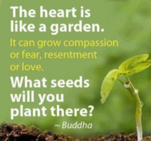 The heart is like a garden. It can grow compassion or fear, resentment ...
