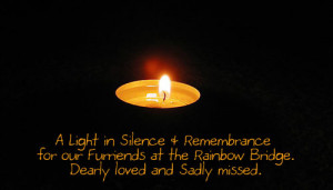 WCB In Silence & Remembrance...