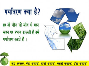 Write An Essay About Environmental Protection