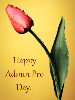 administrative professionals day quotes and secretary sayings pictures ...