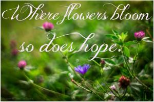 Quote Lady Bird Johnson,