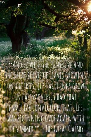Great Gatsby quote #summertime #gatsby #greatgatsby #fscottfitzgerald