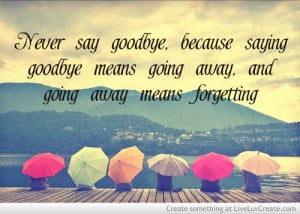 Never Say Goodbye 2