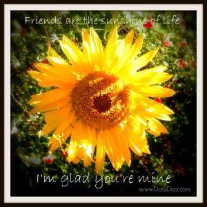 beautiful sunflower in a writer and designers garden. Art and ...